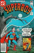 The New Adventures of Superboy #21