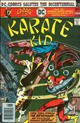 Karate Kid #3
