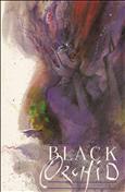 Black Orchid (Mini-Series) Ashcan #1