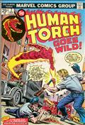 The Human Torch (2nd Series) #2
