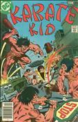 Karate Kid #11