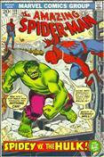 The Amazing Spider-Man #119
