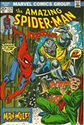 The Amazing Spider-Man #124