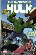 Hulk/Symantec Custom Comic #1